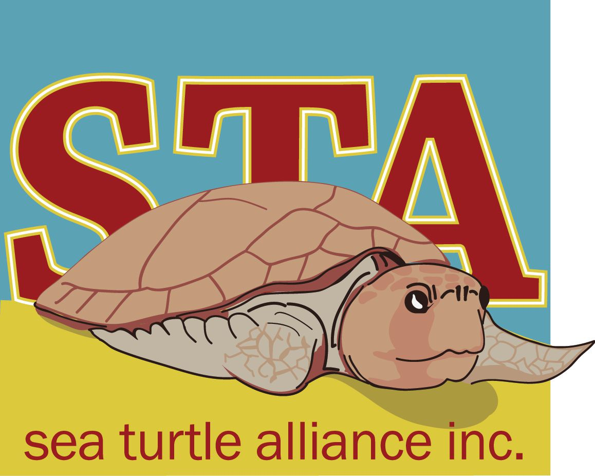 Sea Turtle Alliance